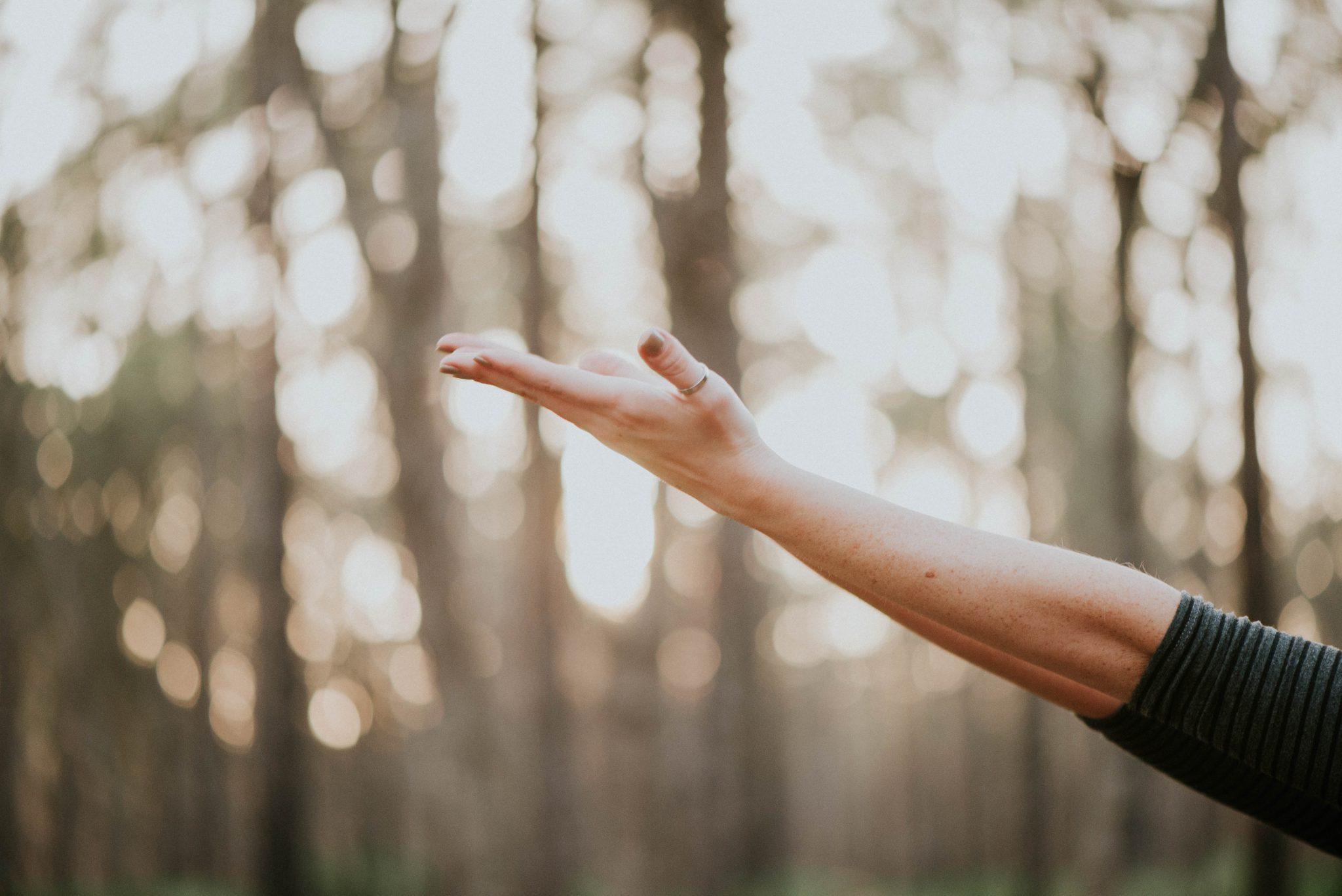 Yoga- och vandringsläger